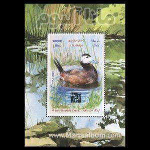 9808 - تمبر اردک سرسفید